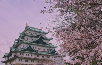 名古屋の特徴からわかるMEOの必要性とおすすめの対策業者3選